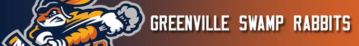 greenville_swamp_rabbits_transaction_banner