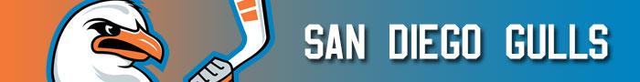 san_diego_gulls_transaction_banner