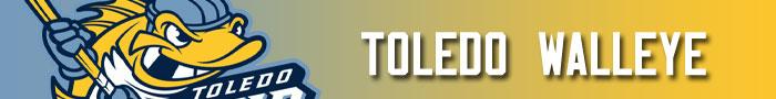 toledo_walleye_transaction_banner